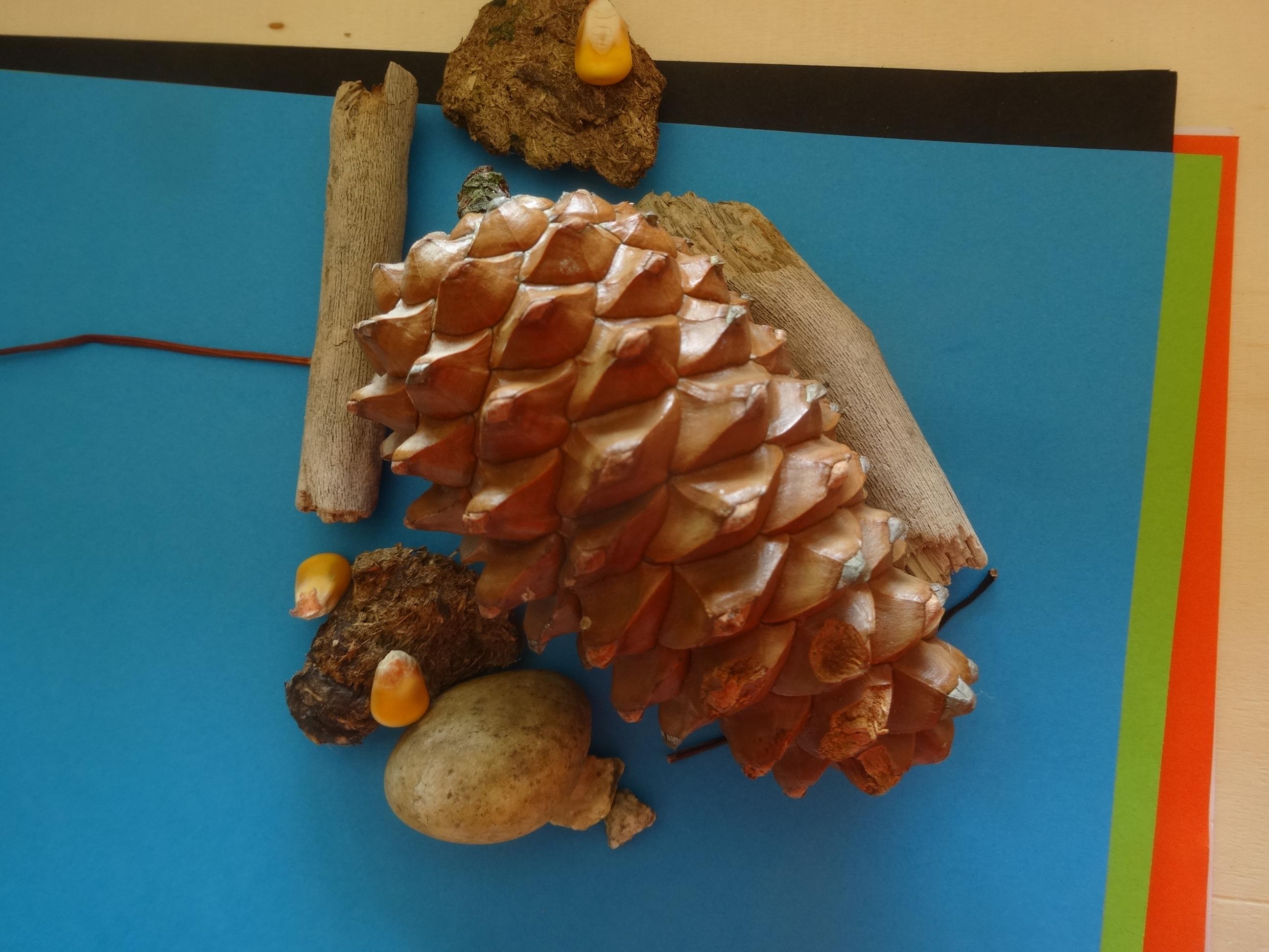 Activit nature cr er avec diff rents objets naturels activit s la maison - Activite a la maison ...