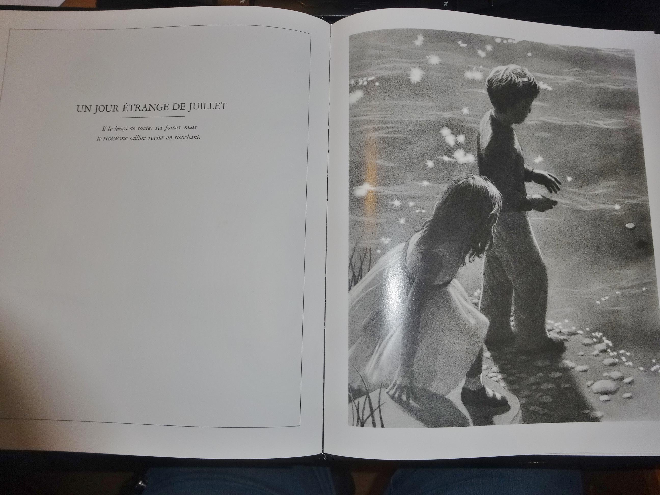 Les myst res de harris burdick chut les enfants lisent 7 for Sous la moquette harris burdick