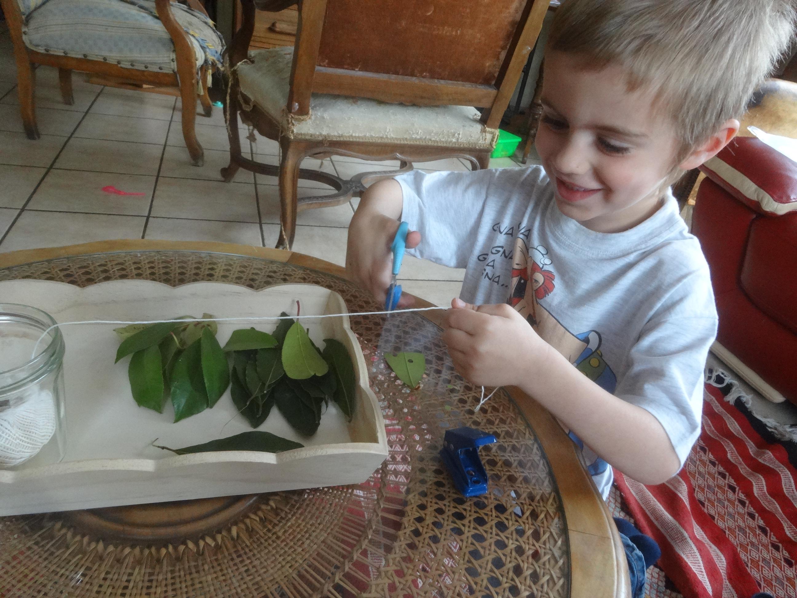 Comment Faire Des Arbres En Papier dedans feuilles d'arbre, ficelle et perforatrice | activités à la maison